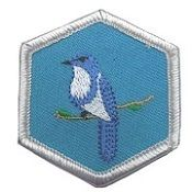 Our Feathered Friends Badge