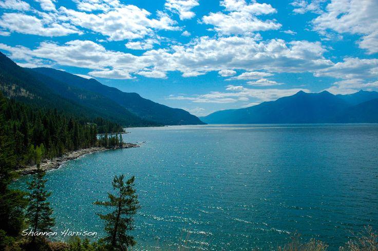 The gorgeous shoreline along Kootenay Lake between Creston, BC and Crawford Bay, BC!