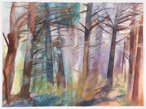 Summer Woods (1)
