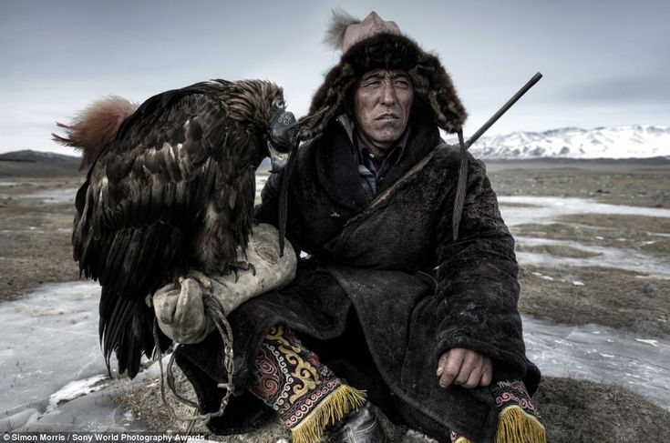 Dramatic: In this Simon Morris photograph titled 'The Mongol', a hunter rests with his hooded eagle outside his home on the plains of Western Mongolia. As well as being a beloved pet, the bird is the key tool the man uses to hunt his prey