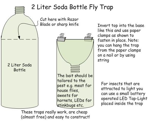 Diy fly trap for the house