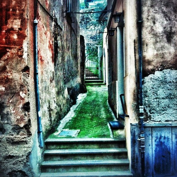 La strada verde #genova #holiday #photo #city http://instagram.com/buothz
