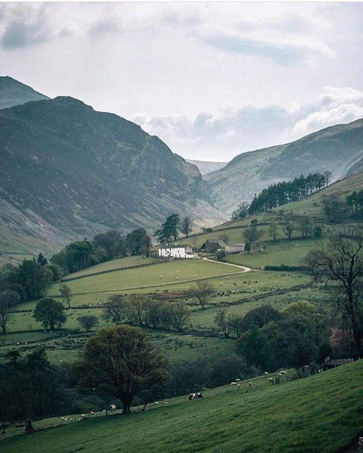 Holiday Cottage South Lakes Flookburgh: 25+ Best Ideas About British Countryside On Pinterest