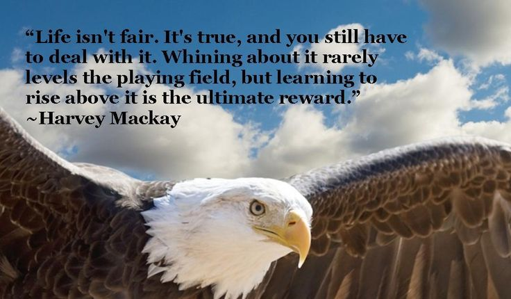 """""""Life isn't fair. It's true, and you still have to deal with it. Whining about it rarely levels the  playing field, but learning to rise above it is the ultimate reward."""" ~Harvey Mackay #rhlelchuk #lynnandrick #harveymackay #life #lifeisntfair #fair #unfair #lifeisunfair #dealwithit #whining #riseabove #reward #ultimatereward #responsible #winner #winners #takingresponsibility #abundance #selfreliance #quotes #motivation #inspiration #transformation"""