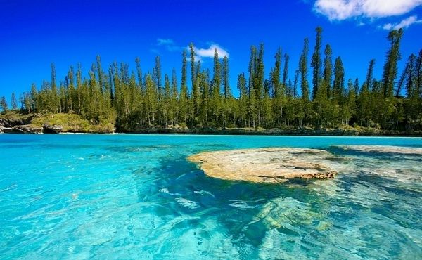 isle of pines, new caledonia - going here on the cruise over new years!