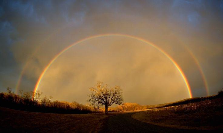 Photos, Moon, God, Nature, Trees Of Life, Double Rainbows, Beautiful, My Heart, Spirituality