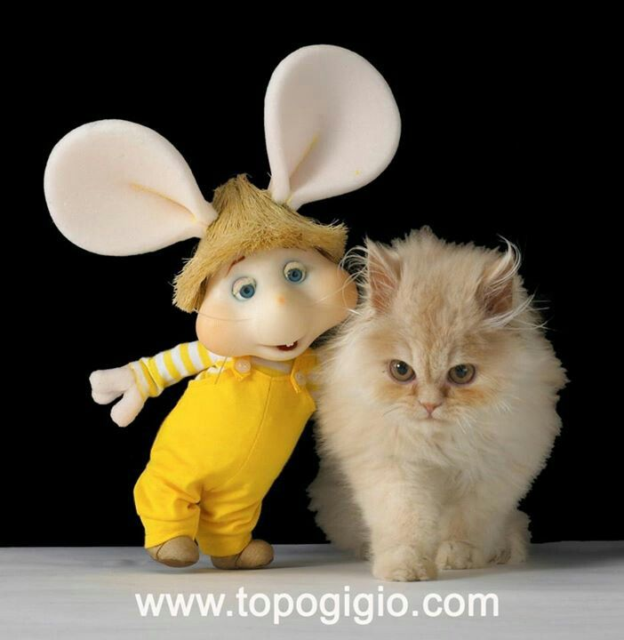 12 best topo gigio images on pinterest cheese computer mouse and rh pinterest com Mickey Cartoon Speedy Gonzales Cartoon