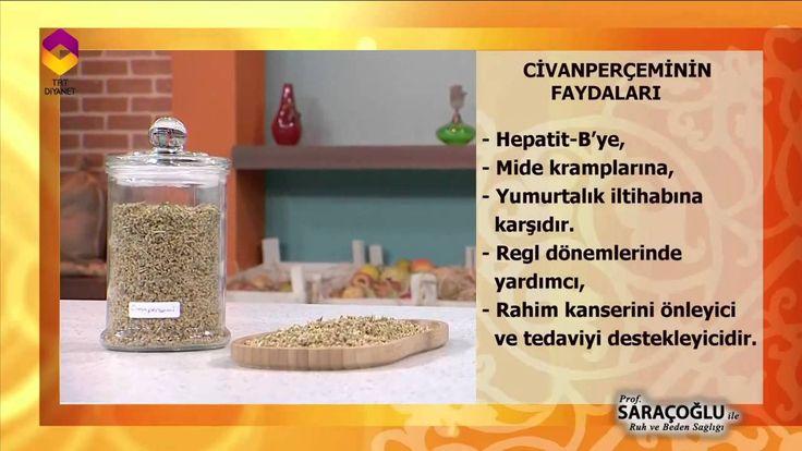 Tıbbi Bitkiler (Civanperçemi) - TRT DİYANET