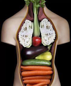 MEDICINA LUI DUMNEZEU: Plantele seamănă cu organele pe care le vindecă