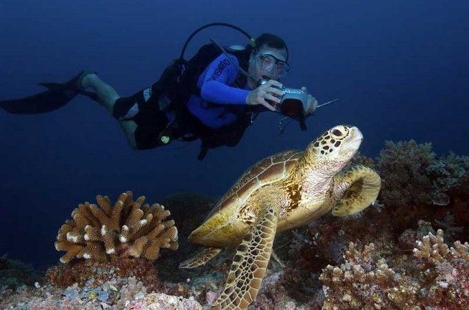 Balinghai Dive Site in Boracay Island – Philippines