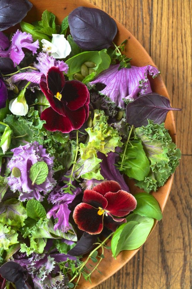 Too gorgeous! Purple Kale and Pansy Salad