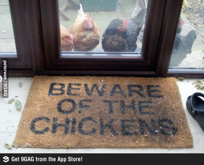 [CasaGiardino]  Beware of the chickens.  Unless you come bearing gifts...you'll receive an egg for your troubles.