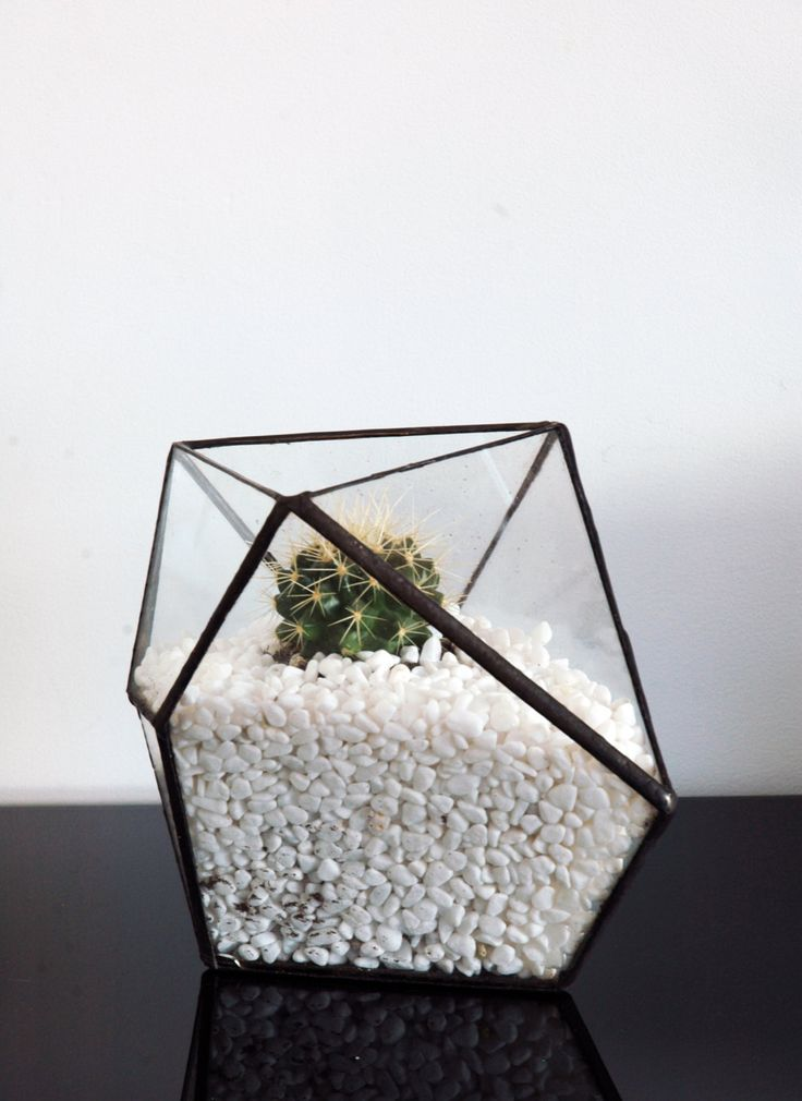 Geometric Terrarium - for air plant or succulents - Stained Glass Triangle by WhiteLiesJewelry on Etsy