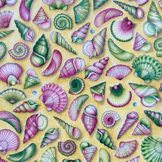 Take A Peek At This Great Artwork On Johanna Basfords Colouring Gallery Basford Coloring BookAdult ColoringColoring BooksColouringPainting