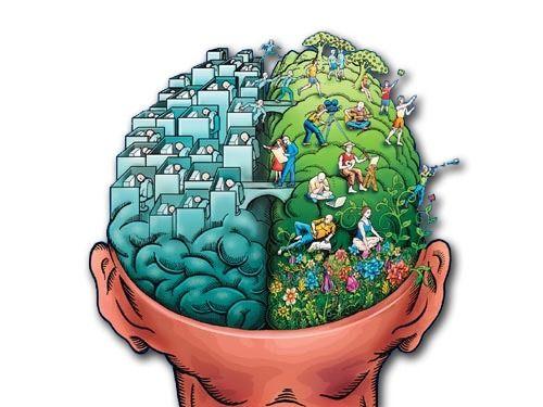 Biologische psychologie: visie op angststoornissen en depressie - Tallsay.com