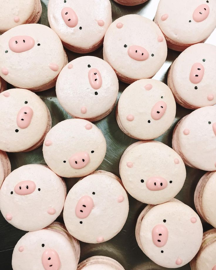 """Oink oink  these are so cute @linayabelike"""