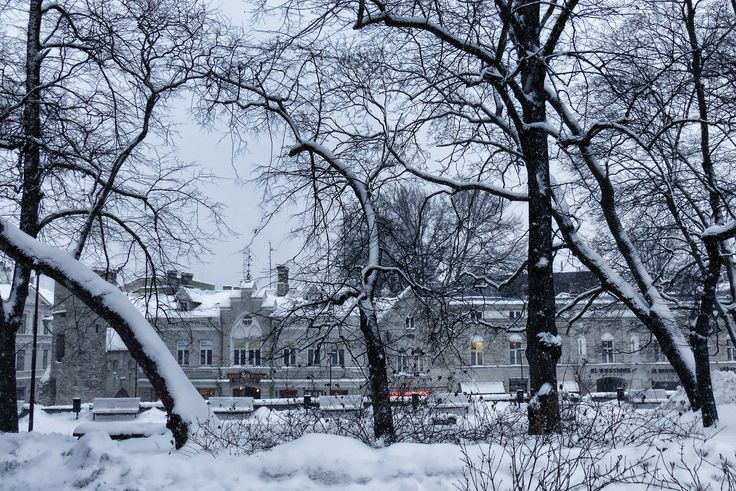 Tallinn enneigé