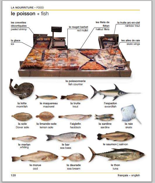 Le poisson | Fish. Dico visuel français-anglais
