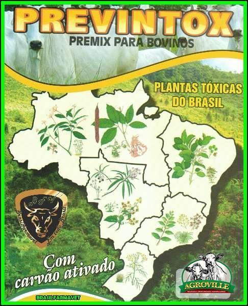 Agroville - Previntox São José do Rio Preto - SP