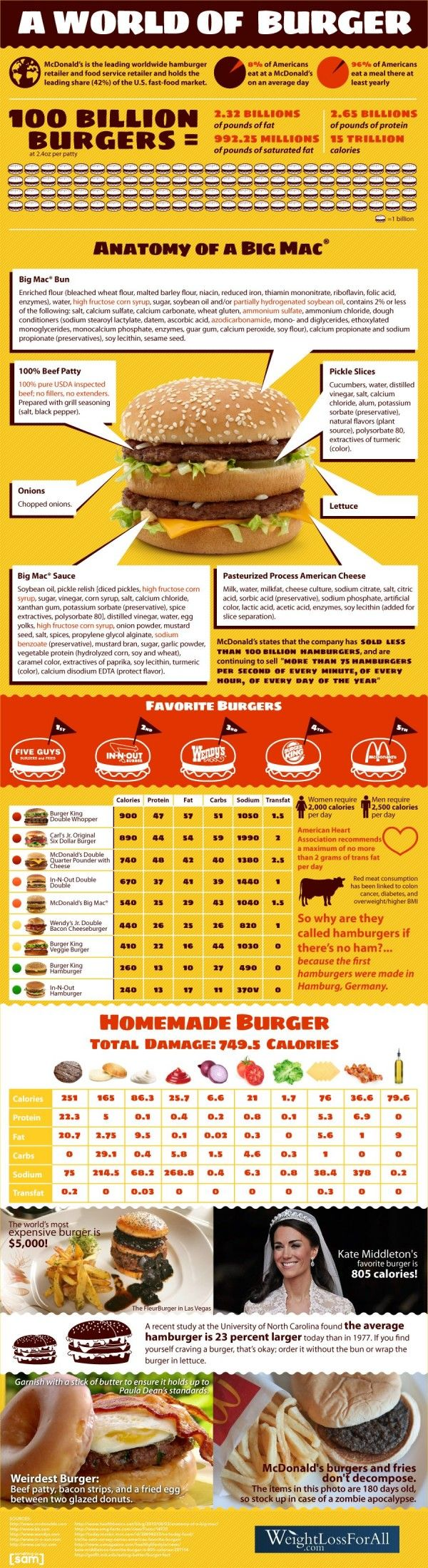 Everything you did or did not was to know about hamburgers.       http://thirtyhandmadedays.com/wp-content/uploads/2011/05/cuteasabuttonteacher.png