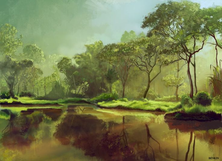 Beautiful morning picture 2d landscape morning forest - 2d nature wallpapers ...