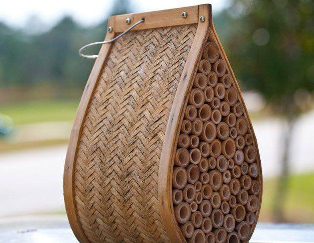 Mason Bee Hive | Best Bee Hive Plans | Build a Hive & Help the Bees | Guide To Beginner Beekeeping by Pioneer Settler at http://pioneersettler.com/best-bee-hive-plans-build-a-hive-help-the-bees/