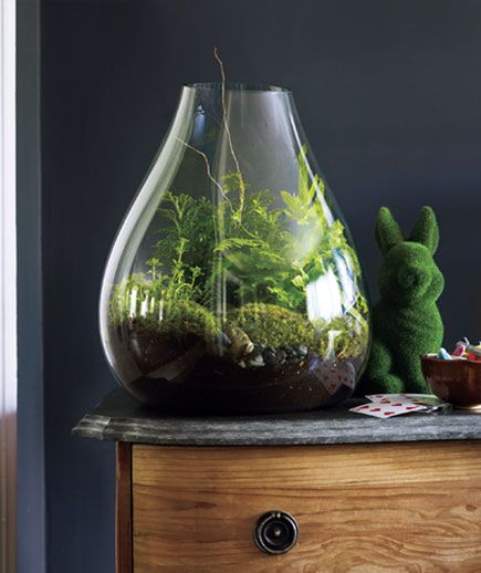 Lush | Create a Cozy Home | Real Simple ~ A terrarium, like a bowl of fish, adds life to a room. It also reflects light, so it's nice for brightening dark walls. Delicate greenery feels calming and homey—and sophisticated when contrasted in a sleek, modern orb.