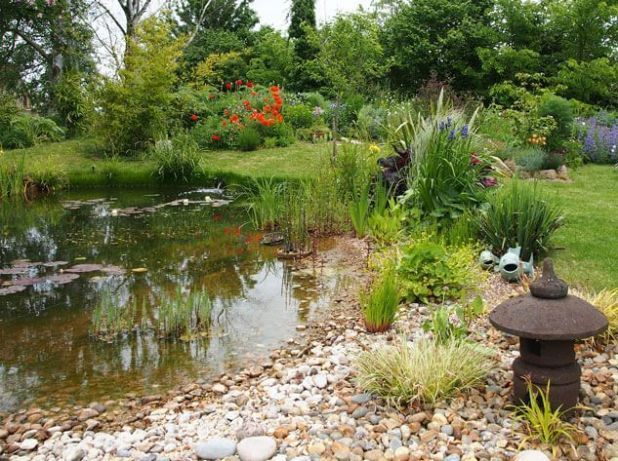 B02 Club Garden Pond Design Natural Pond Pond Landscaping