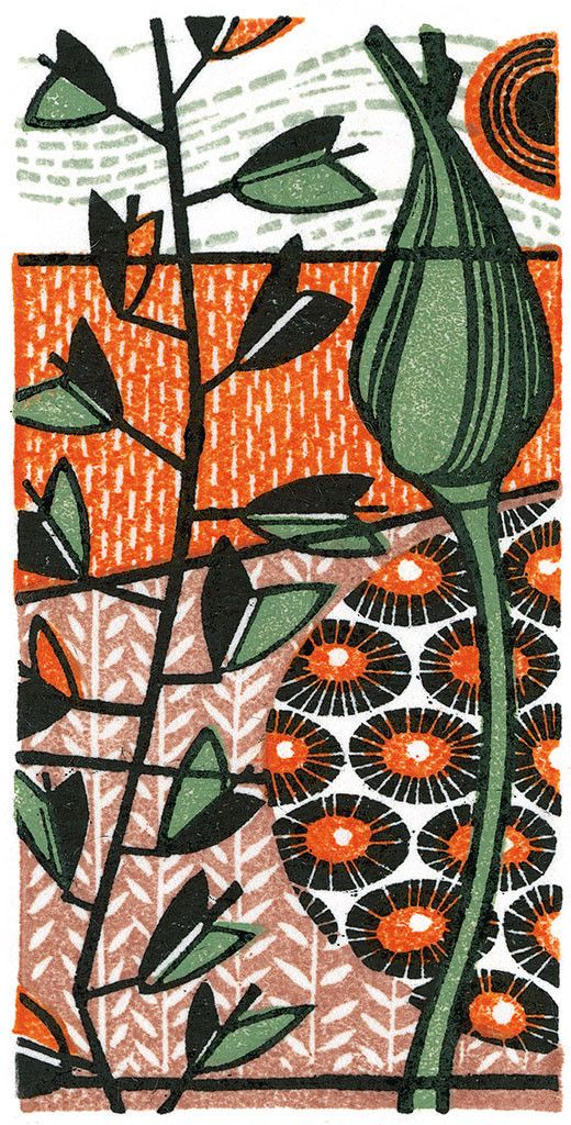 Dandelion II - wood engraving print by Angie Lewin - printmaker