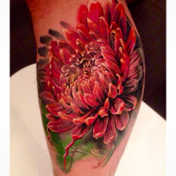 Chrysanthemum done by Dmitry Vision (Bloodlines Gallery, Pittsburgh), guesting…