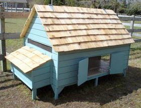 Fresh Eggs Daily. Chicken Coop Plans Easy DIY Backyard Barnyard Poultry Duck PDF - House up to 12 Hens in Style