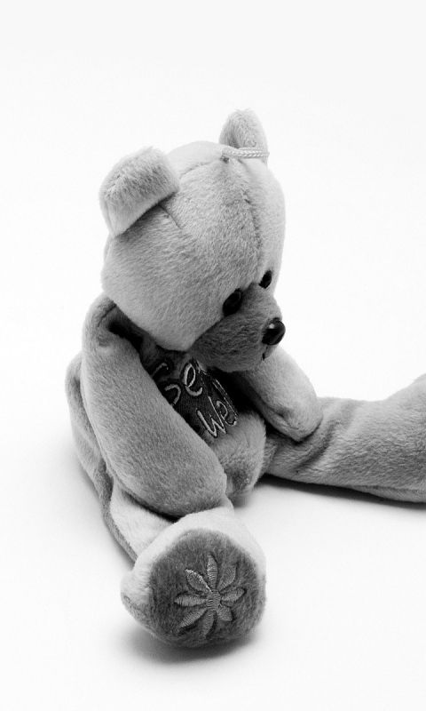 480x800 Wallpaper bear, toy, soft, black and white
