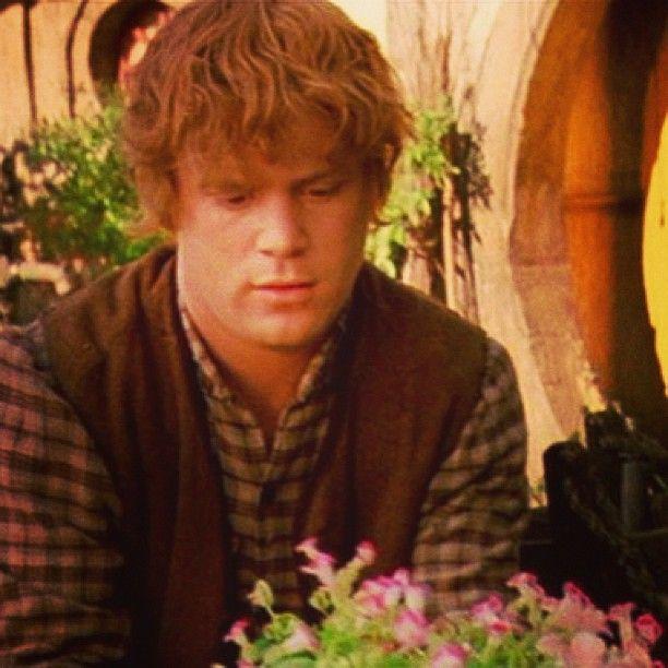 Sam Samwisegamgee Seanastin Hobbit Shire Flowers Lotr Thehobbit Lordoftherings Regram Via Lordofthe Lord Of The Rings The Hobbit Samwise Gamgee