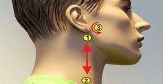 Как снизить артериальное давление за 5 минут Точки 1 и 2 Линия начинается немного ниже мочки уха и идет вниз по шее как показано на рисунку. Не надавливай на эту линию, а лишь легко проведи по ней от начала до конца, нежно касаясь кончиками пальцев. Повтори процедуру 10 раз с обеих сторон головы. Точка 3 Следующая линия начинается на высоте мочки уха (примерно 1 см от уха) и двигается дугой по направлению к носу. Легко массажируй линию с обеих сторон кончиками пальцев.  Не надавлив