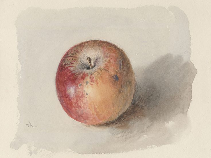 John Ruskin: John Ruskin - Blenheim Orange Apple c.1873, Watercolour and bodycolour on heavyweight white wove watercolour paper; 11.7 x 16.5 cm (sight), Private collection