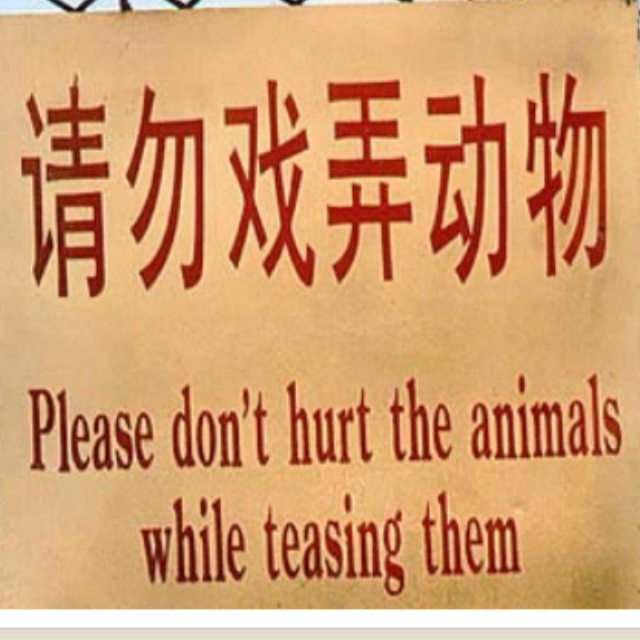 Best Asian Signs Images On Pinterest Broken English Fails - 27 translation fails in asia that are beyond hilarious