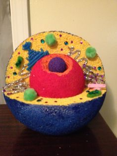 animal cell jello project | Animal cell | cell projects ...