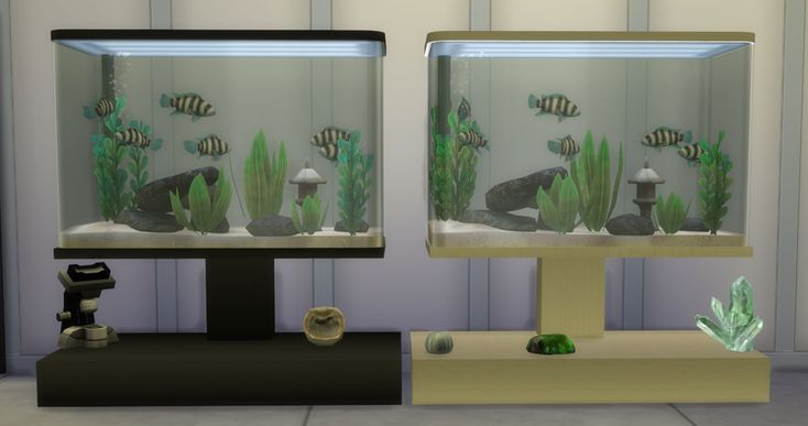 Cc Fish Tanks Sims  Cats And Dogs