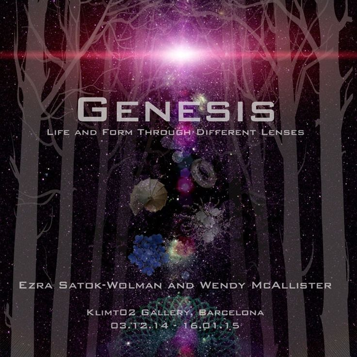 Genesis, Life and Form Through Different Lenses by Ezra Satok-Wolman and Wendy McAllister. -   Exhibition  /  03 Dec 2014  -  16 Jan 2015 - Klimt02 Gallery Barcelona
