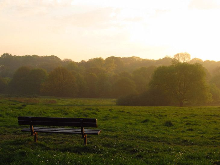 Hampstead Heath Looks Gorgeous In These Photos | Londonist