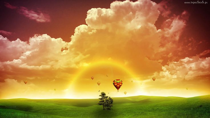 Zachód, Słońca, Chmury, Łąka, Drzewo