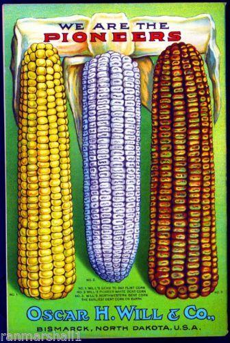 Wills-Flint-Corn-Vintage-Vegetable-Seed-Packet-Catalogue-Advertisement-Poster