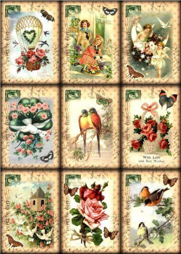 9-POSTCARD-BIRD-FLOWER-HOTAIR-VINTAGE-155-LB-PAPER-CRAFT-CARD-SCRAPBOOK-TAG