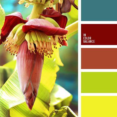 amarillo limón, amarillo plátano, cardenal, carmín alizarina, celeste, color…
