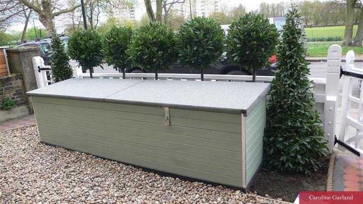 Front garden and bike shed in Wandsworth | Caroline Garland Garden Design