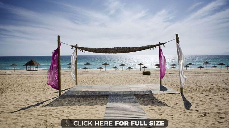 Summer Beach 12494