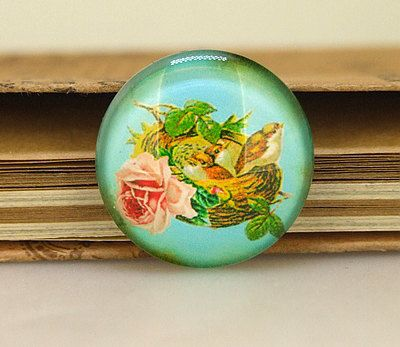 03 Charm Rural Flower Mother bird Bird Nest crystal by backgard