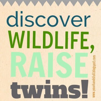 You've Got Your Hands Full - a blog for moms of twins or lots of littles