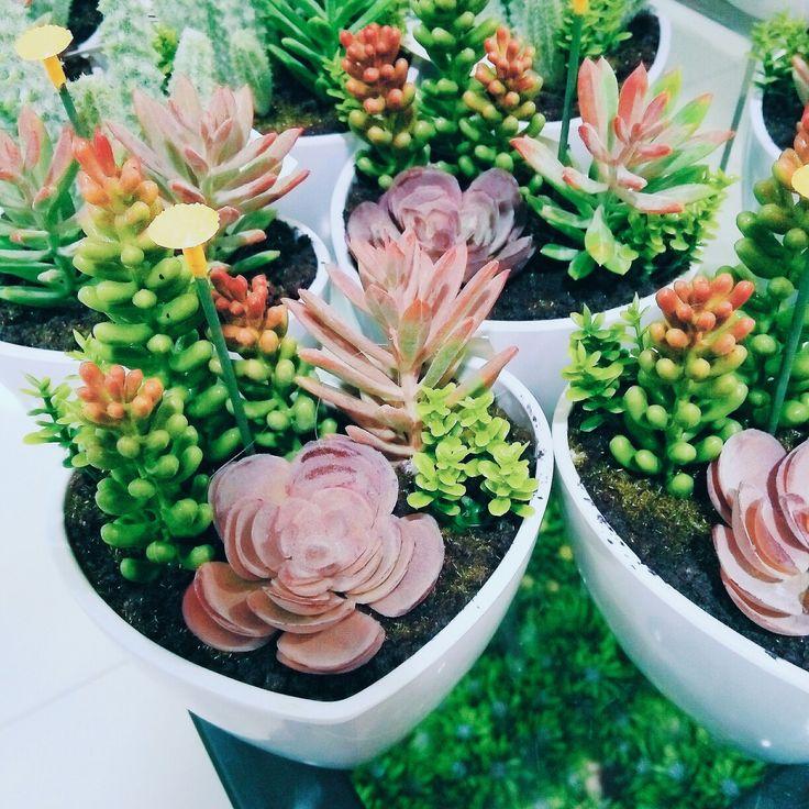 Artificial #succulent