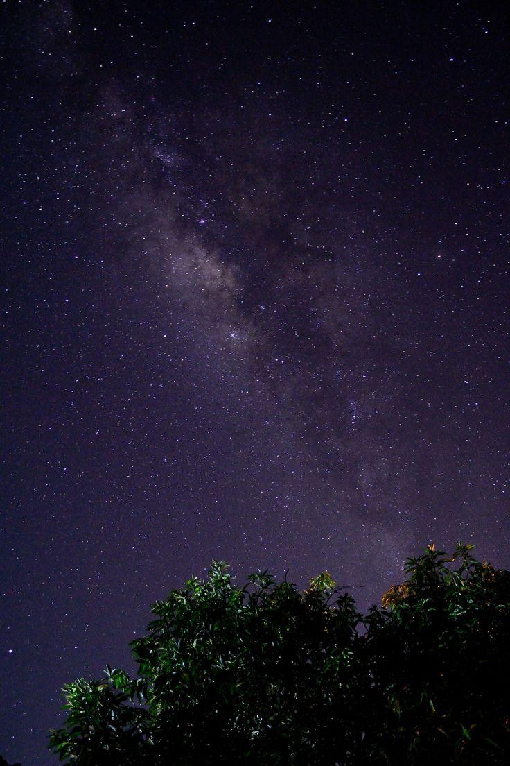 Milky way above my homeyard